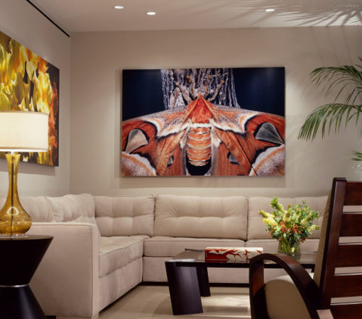 Interior Design From Clients Own Art - JRWD Interior Design
